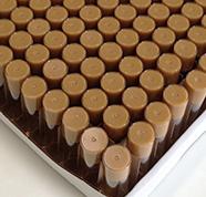 Drosophila Food Recipe Molasses
